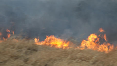 Brush fire in dry field after drought Footage