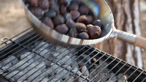 Chestnuts On Fire stock footage