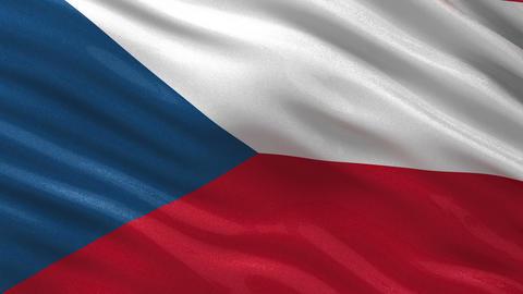 Flag of Czech Republic seamless loop CG動画