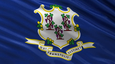 US State Flag Of Connecticut Seamless Loop stock footage