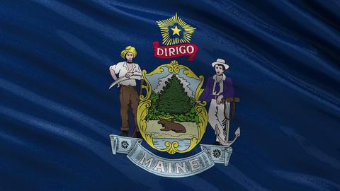 US state flag of Maine seamless loop Animation