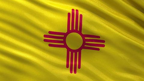 US state flag of New Mexico seamless loop Animation