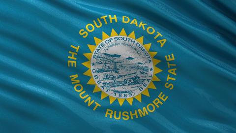 US state flag of South Dakota seamless loop Animation