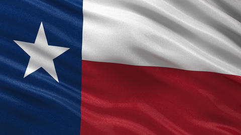 Flag of Texas seamless loop Animation