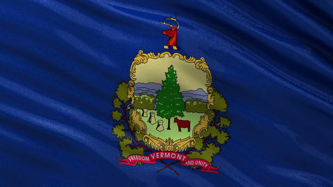 US state flag of Vermont seamless loop Animation