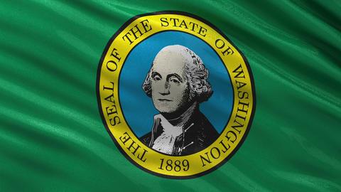 US state flag of Washington seamless loop Animation