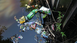 Rubbish in the water. Water pollution. Static shot Live Action