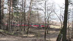 Local train in Poland. View from the forest Live Action