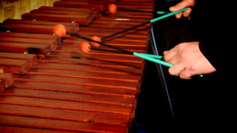 Xylophone Live Action