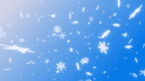 Snow Flake DM1 Stock Video Footage