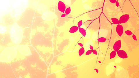 Spring Floral Background Stock Video Footage