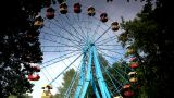 Carousel View Full Height stock footage