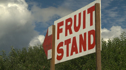 HD2008-8-2-14 fruit stand Okan Footage