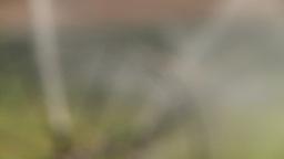 HD2008-8-2-42 farm sprinkler rack Footage