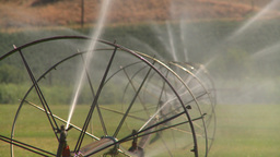 HD2008-8-2-42 farm sprinkler rack Stock Video Footage