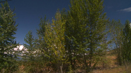 HD2008-8-2-58 drive okanagan dry feild Footage