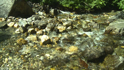 HD2008-8-3-43 mountain stream Stock Video Footage