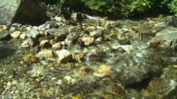 HD2008-8-3-43 mountain stream Footage