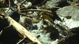 HD2008-8-3-45 mountain stream Stock Video Footage