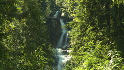 HD2008-8-3-49 mountain stream Stock Video Footage