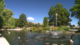 HD2008-8-4-38 water fountain ducks Stock Video Footage