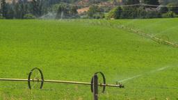 HD2008-8-4-46 farm irigation Footage