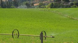 HD2008-8-4-46 farm irigation Stock Video Footage