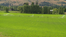 HD2008-8-4-48 farm irigation Stock Video Footage
