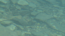 HD2008-8-7-24 Moraine lake reflection depth Footage