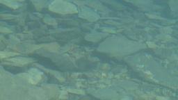 HD2008-8-7-24 Moraine lake reflection depth Footage