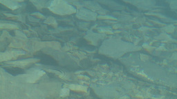 HD2008-8-7-24 Moraine lake reflection depth Stock Video Footage
