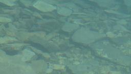 HD2008-8-7-24 Moraine lake reflection depth Stock Video Footage