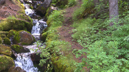 HD2008-8-7-30 mossy mtn stream Stock Video Footage