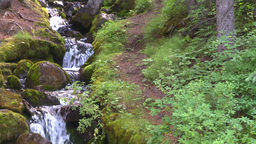 HD2008-8-7-30 mossy mtn stream Stock Video Footage