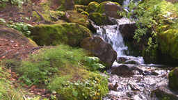 HD2008-8-7-32 mossy mtn stream Stock Video Footage