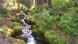 HD2008-8-7-34 mossy mtn stream Stock Video Footage