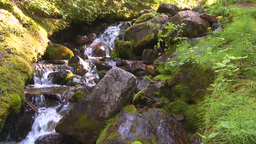 HD2008-8-7-42 mossy mtn stream Stock Video Footage