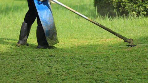 mows overgrown green grass by petrol trimmer Footage