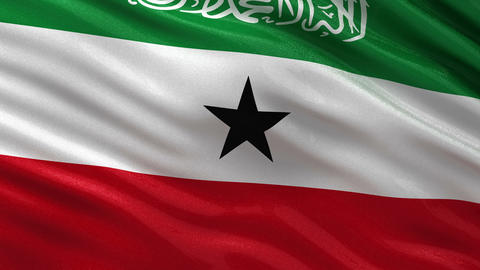 Flag of Somaliland seamless loop Animation
