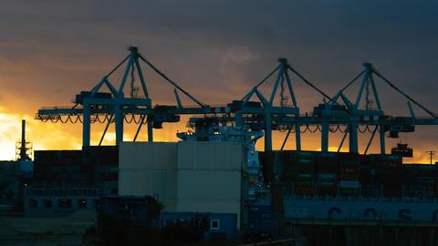 Crane In Harbor, Hamburg stock footage