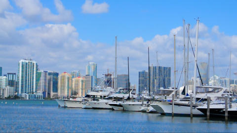 Marina in Key Biscayne Stock Video Footage