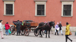 Warsaw. Horse cab in front of the royal palace Footage
