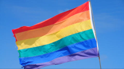 Rainbow flag waving in the wind Stock Video Footage