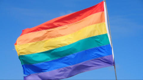Rainbow Flag Waving In The Wind stock footage
