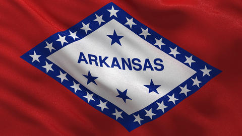 US state flag of Arkansas seamless loop Stock Video Footage