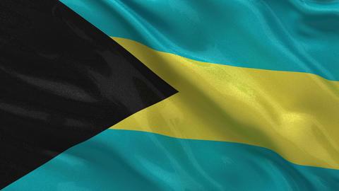 Flag of the Bahamas seamless loop Stock Video Footage