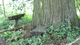 Empty old swing in a very old garden Stock Video Footage