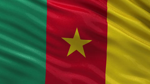 Flag of Cameroon seamless loop Animation