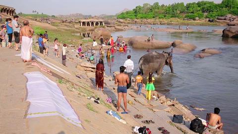 HAMPI, INDIA - APRIL 2013: Elephant walking into r Stock Video Footage
