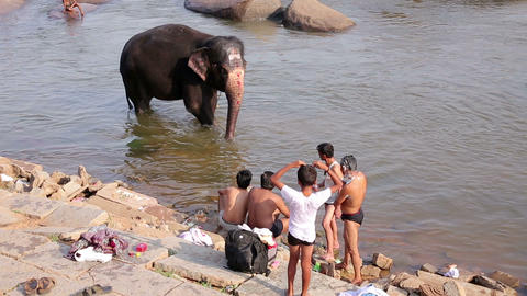 HAMPI, INDIA - APRIL 2013: People and elephant wad Stock Video Footage
